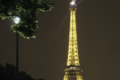 Good Night, Paris