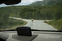 Norwegian Traffic Control